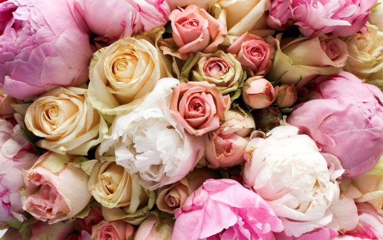 bloemen-2-4